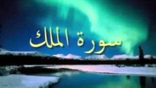 سورة الملك بصوت الشيخ منصور السالمي