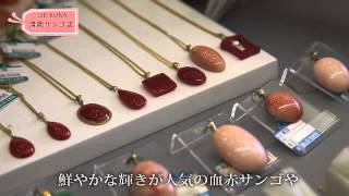 清岡サンゴ店 -OBIBURA CHANNEL-