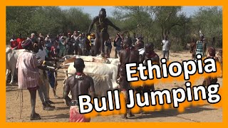Ethiopia - Bull jumping and women whipping, a controversial ceremony