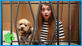 Logan And The Box Fort Prison Escape / Logan The Adventure Dog