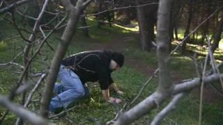 Bear Grylls e Fiammetta Cicogna in Wild oltrenatura puntata 2012