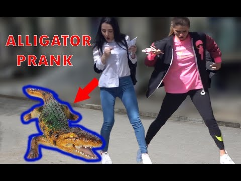 Remote Controlled ALLIGATOR PRANK 2019 AWESOME REACTIONS Best of Just For Laughs