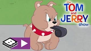 Tom & Jerry | Bad Winner Puppy | Boomerang UK