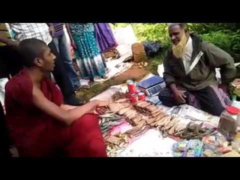 Xxx Mp4 Buddhist Monk Who Perpetrated Anti Muslim Violence Threatens Muslim Trader 3gp Sex