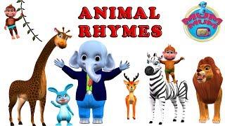 Animal Songs Collection | Animal Nursery Rhymes Songs for kids, children, babies | Mum Mum TV