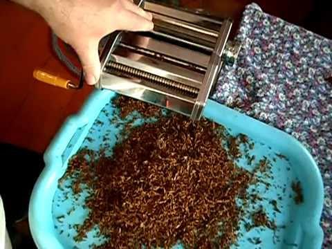 Выращивание и обработка табака в домашних условиях 66
