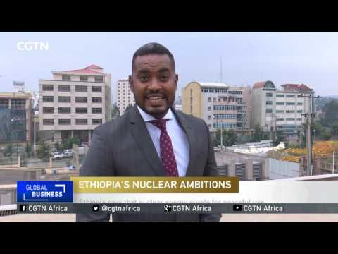 Russia to help Ethiopia in development of nuclear energy