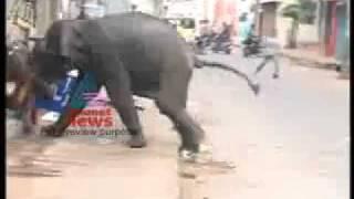 malayalam news live (16).flv