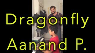 Dragonfly - Aanand P.