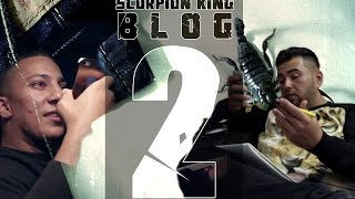 Summer Cem - SCORPION KING Blog 2 [ HAK ]