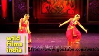 Russian dancer Irina Iskorostenskaia performs in India