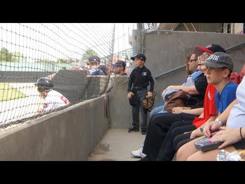 Young boy dreams of becoming an umpire