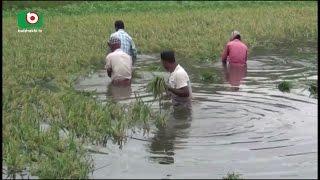 Laxmipur Gopalgonj Nougaon Flooded | Faria | 25April17