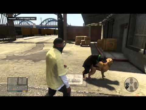 GTA V Fucking Dogs