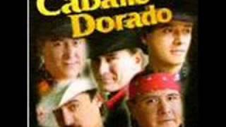 Caballo Dorado  Vaquera Sexy