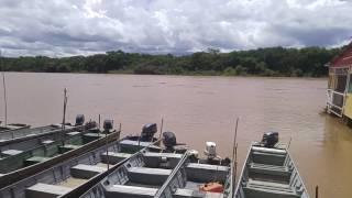 Ester Tigresa do whatsapp pronta pra descer pro pantanal