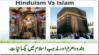 Dr Zakir Naik Urdu Speech {Similarity between Iand Hinduism} lsamic Bayan in Hindi -Peace TV-HD