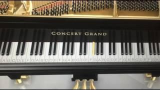 Sirikkaadhey (Remo) Piano Tutorial