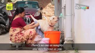 Idea Short Film - Mittu