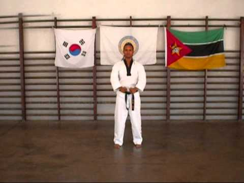 Xxx Mp4 Taekwondo Poomsae 1 8 3gp Sex