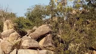 Tourist In Dassam Fall