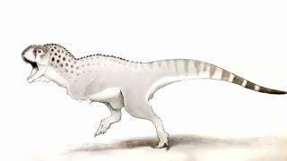 'Last African dinosaur' found in mine in northern Morocco