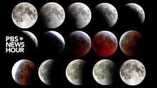 WATCH LIVE: 2019's only total lunar eclipse