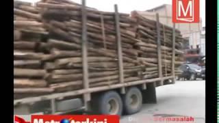 RAPP langgar Aturan lantas, Muat kayu 50 ton