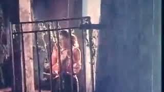 বর্ষা বাদল সিনেমার পপি শাকিল খানের সেরা হট গান না দেখলে চরম মিস!