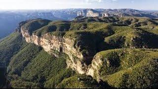 عجائب غابات استراليا - HD