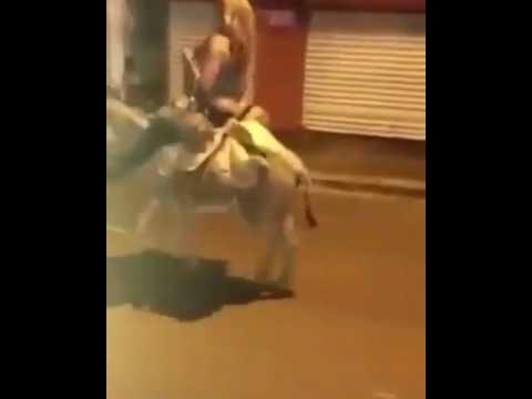 Xxx Mp4 Mujer Dominicana Montando En Burro Y Bebiendo Jaja 3gp Sex