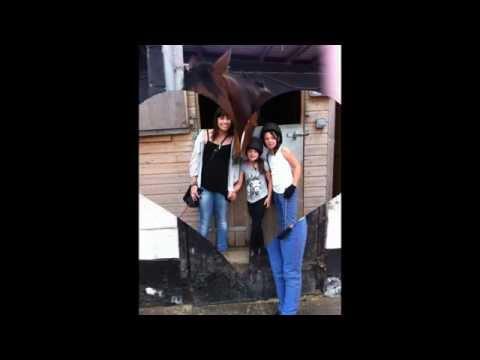 Xxx Mp4 Horses From My Farm Xxxxx 3gp Sex