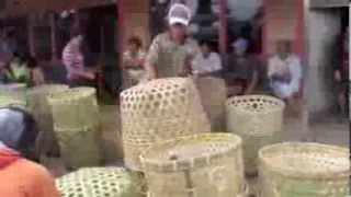 The Great Rantepao Water Buffalo Market