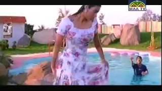 Bollywood Actress Tabu Wet in Pool in a Telugu Movie with Nagarjuna