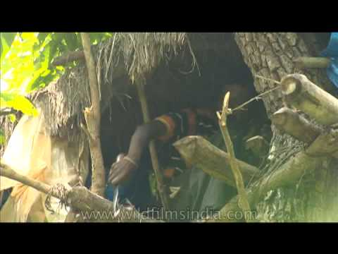Xxx Mp4 Tribal From India Cleaning Up His Tree House 3gp Sex