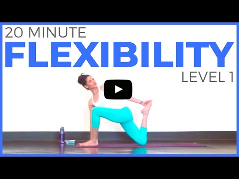 Xxx Mp4 20 Minute Yoga For Flexibility Level 1 3gp Sex