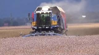 Hagley Poppy Harvest Part 1.