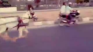 Vaniyambadi horse race atn