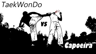 Taekwondo vs Capoeira vs Karate vs Kung Fu