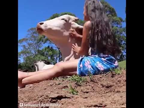 Xxx Mp4 Calcinha Caida E A Vaca De Maria Flor 3gp Sex