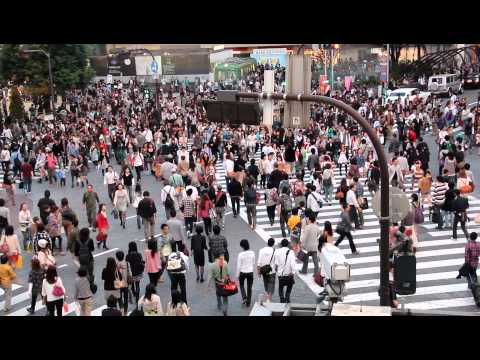 Shibuya Crossing Full HD 渋谷駅 東京