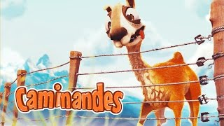 [Caminandes 2: Gran Dillama] - Animation Short Film for Children