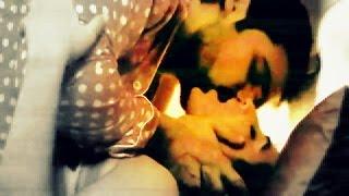 Vidya Balan Hot KISSING Scenes | Emraan Hashmi Hot KISS | Hot Bed Scenes