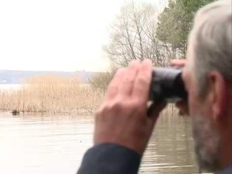 ролик как ловят браконьеров