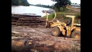 Angkutan kayu di kalimantan