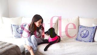Köpek Sahiplenme, Eğitimi & Bakımı   Ece Targıt