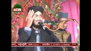 biutiful bangla waz,allama syed mokarram bari,darbare baria sharif