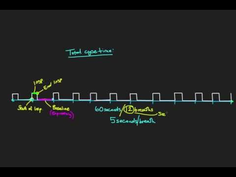 Principles of Mechanical Ventilation 3: Total Cycle Time and I:E ratio