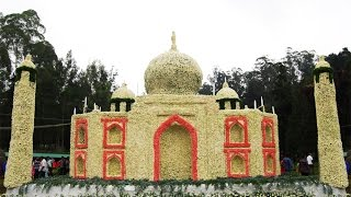 Ooty Flower Show 2015