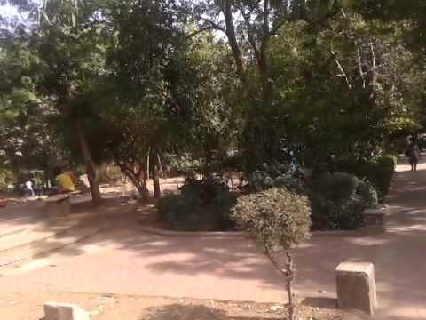 law garden Love garden in ahmedabad ahmedabad garden
